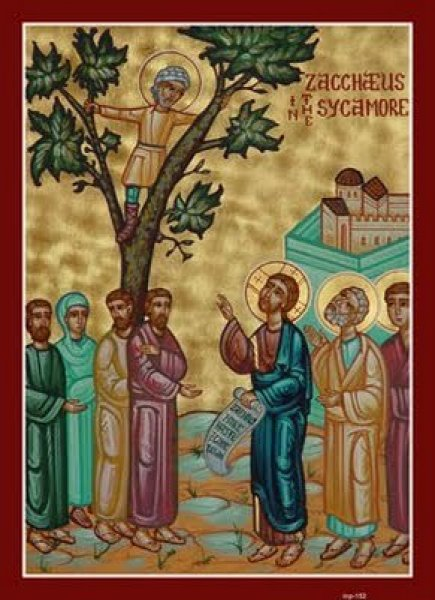 zacchaeus-in-the-sycamore-tree