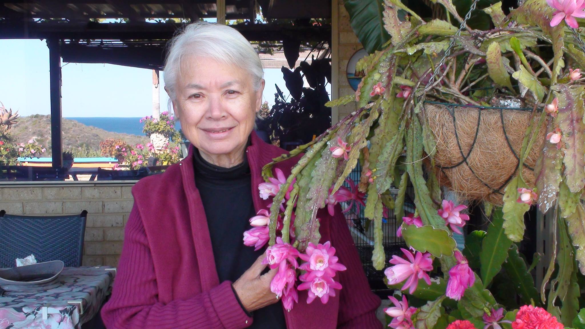 Anne Mazzella